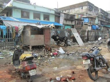 Uno de los dispensarios de barefoot acupuncturist se encuentra en la parte de abajo de ese local azul, en la barriada de chabolas de Bandra Estation.