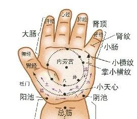 手掌正面穴位图