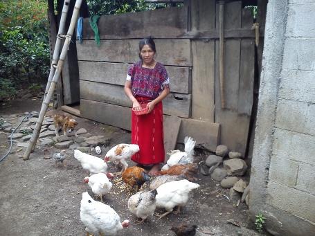 Diferentes familias de la comunidad nos acogen para comer