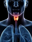 19040236-3d-rendered-illustration-of-a-thyroid-cancer
