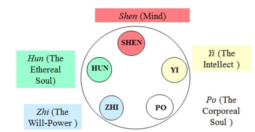 5 SHEN Mciocia blog