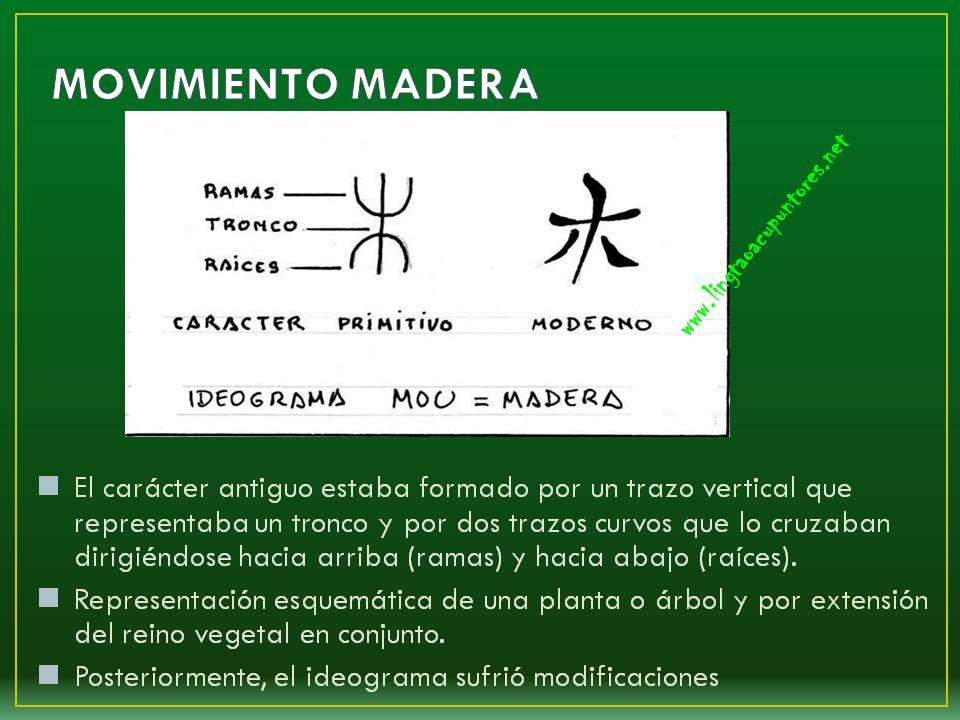 Presentación MADERA_llingtaoacupuntores
