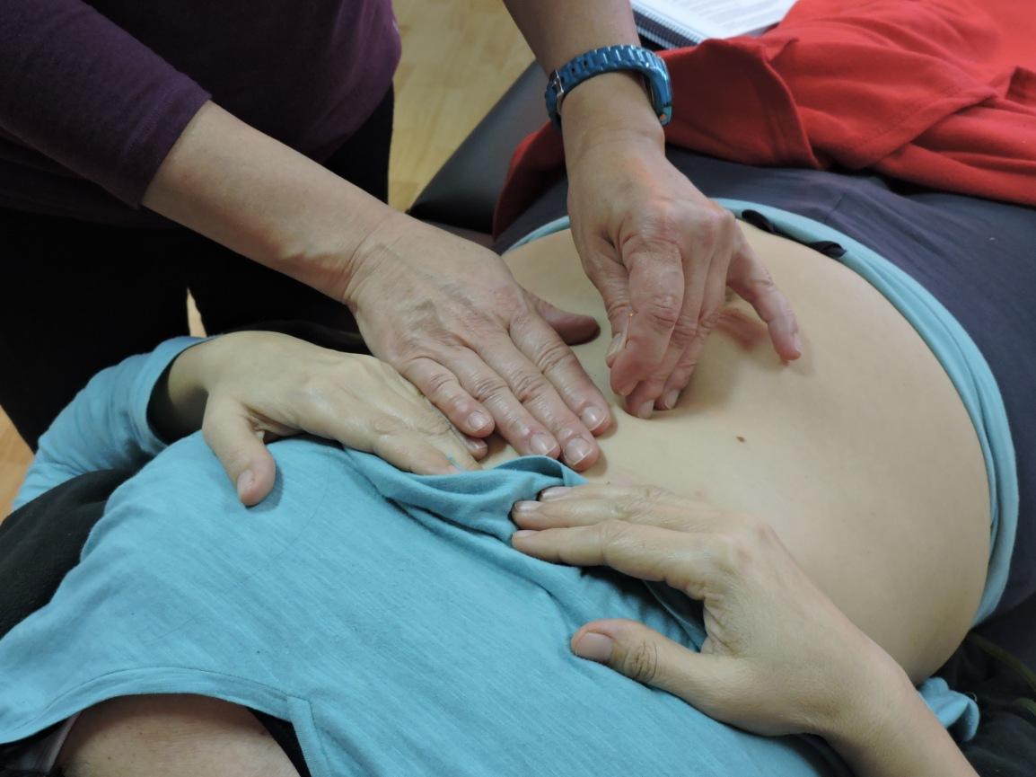 15 y 16 Diciembre,  Trastornos del sistema digestivo con Acupuntura-Moxibustión y Medicina TradicionalOriental