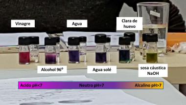 pH (1)